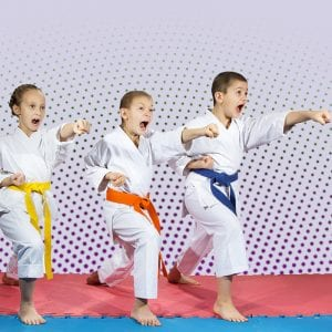 Martial Arts Lessons for Kids in Boscobel WI - Punching Focus Kids Sync