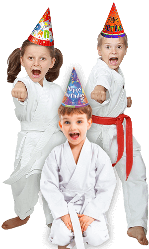 Martial Arts Birthday Party for Kids in Boscobel WI - Birthday Punches Page Banner